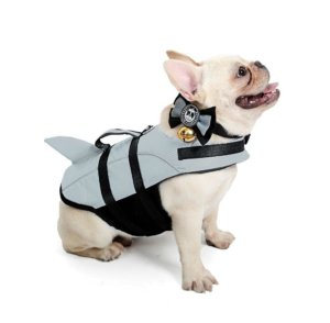 frenchie world shark life swimming vest