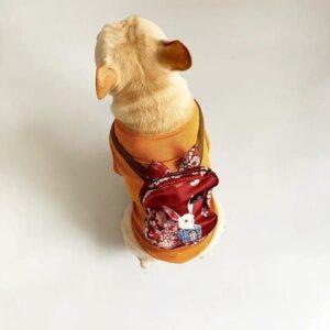 French Bulldog Summer Cooling Jacket