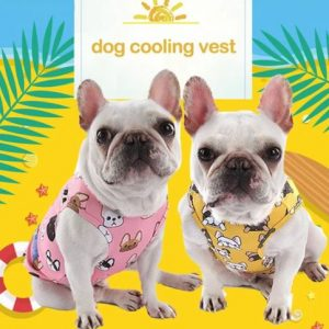 summer cooling vest for french bulldogs 1