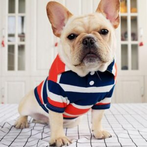summer french bulldog polo t-shirt