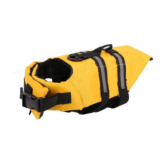 french bulldog life swimming vest