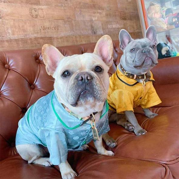 satin french bulldog pajamas