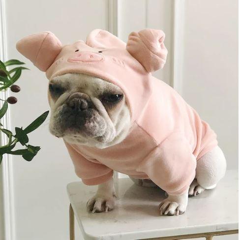 french bulldog plush pig hoodie