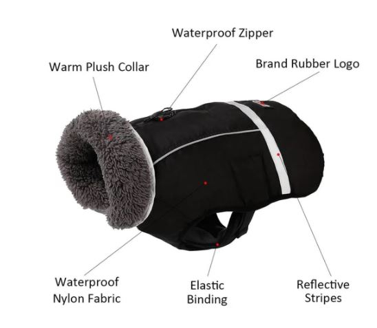 waterproof french bulldog parka 1