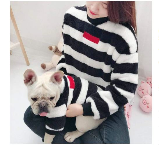 striped fuzzy matching french bulldog sweater