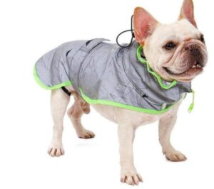 windbreaker reflective french bulldog vest 1