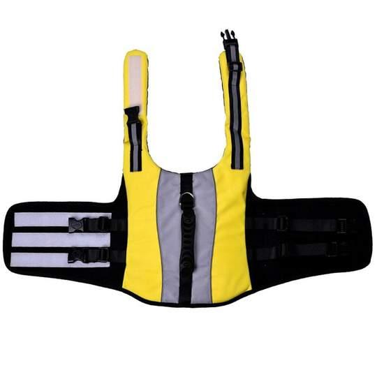 neon french bulldog life jacket frenchie world shop 15268237410349 540x