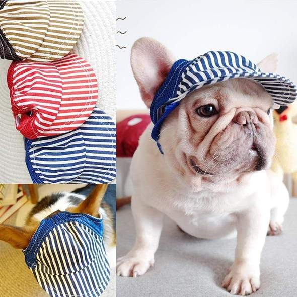 french bulldog summer hats