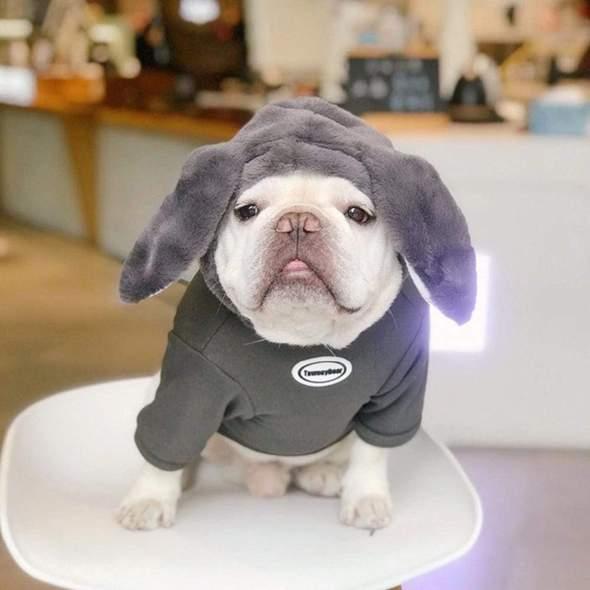 giant bunny french bulldog hoodie frenchie world shop s 28671707906197 590x