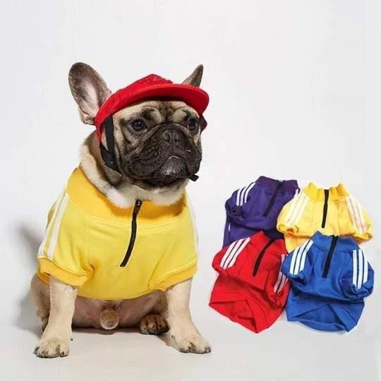 three stripes frenchie hoodie frenchie world shop 15568864051245 540x