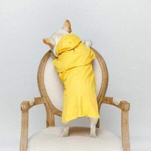 classic french bulldog raincoat frenchie world shop 3671826301029 590x