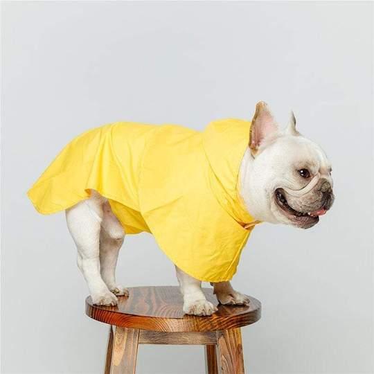 classic french bulldog raincoat frenchie world shop 3671884824677 540x