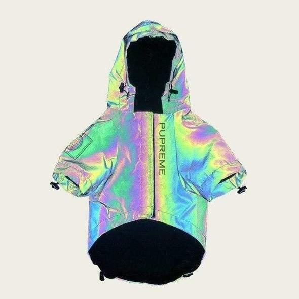 designer reflective french bulldog jacket frenchie world shop reflective xxl 12548750671917 590x