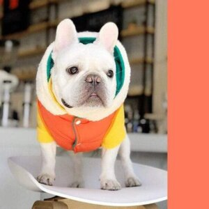 french bulldog jackets