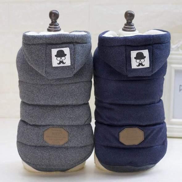 frenchie s winter jacket frenchie world shop 31630096957589 590x