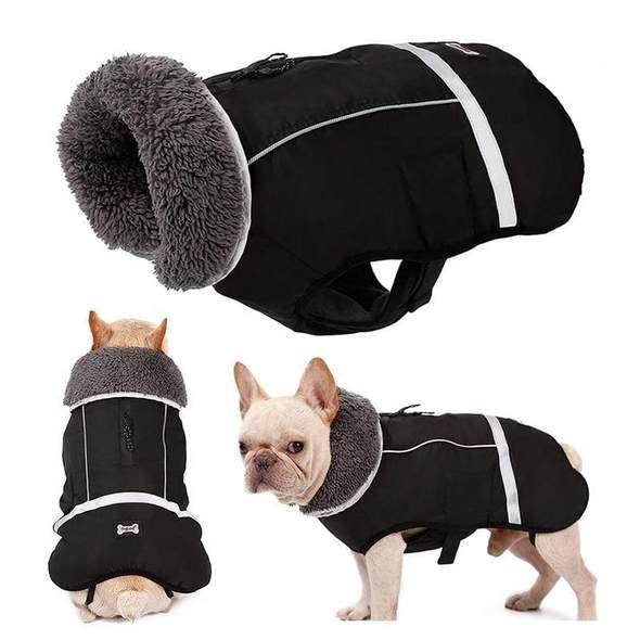 waterproof french bulldog parka frenchie world shop black s 18265194201237 590x