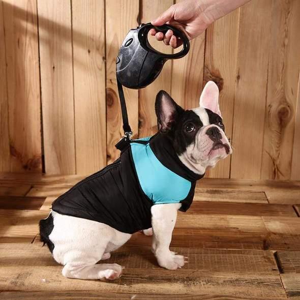 waterproof french bulldog vest frenchie world shop blue s 5538418229293 590x