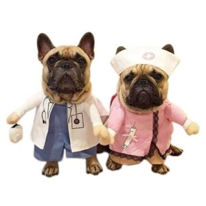 doctor and nurse halloween dog costume frenchie world shop 3698076450917 540x
