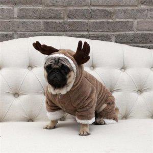 christmas dog costume