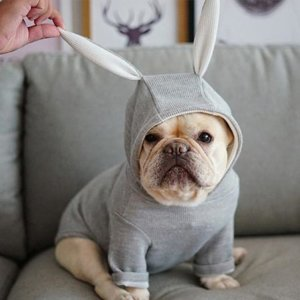french bulldog rabbit hoodie