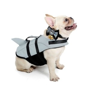 frenchie world shark life swimming vest